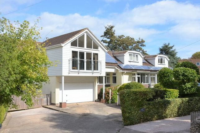 Thumbnail Bungalow for sale in Galmpton Farm Close, Galmpton, Brixham