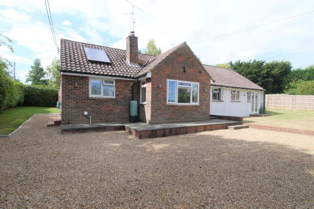 Thumbnail Detached bungalow to rent in Hayes Lane, Slinfold, Horsham