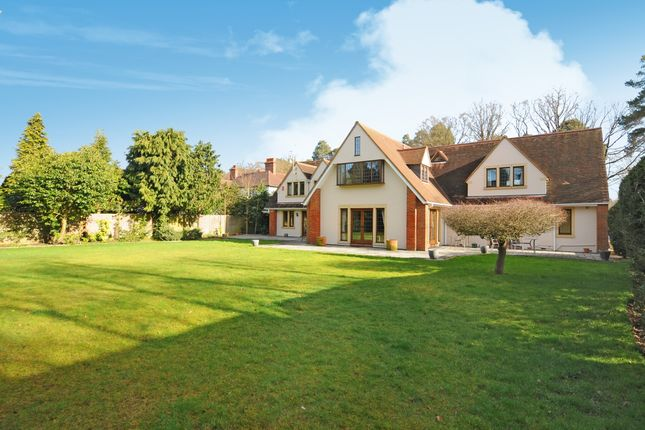 Thumbnail Detached house to rent in Winkfield Road, Ascot