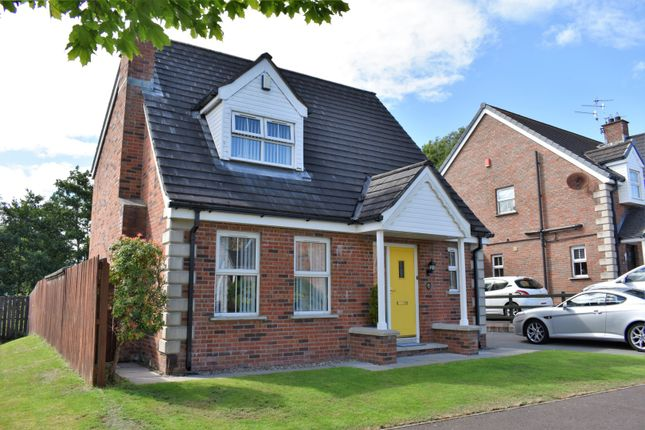 Thumbnail Detached house for sale in Glenbrae, Lisburn
