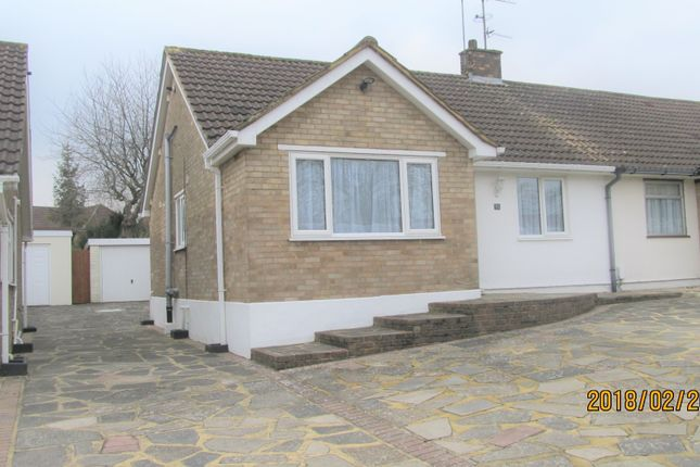 Thumbnail Bungalow to rent in Hilborough Way, Farnborough Kent
