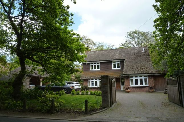 Thumbnail Detached house to rent in Salisbury Road, Winkton, Christchurch
