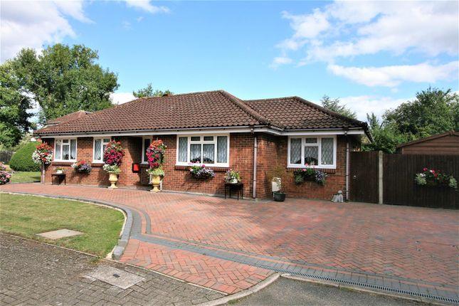 Thumbnail Detached bungalow for sale in Ash Copse, Bricket Wood, St. Albans