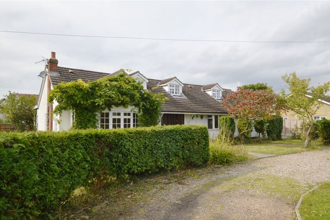 Thumbnail Detached house to rent in Thornton Road, Little Canfield, Dunmow