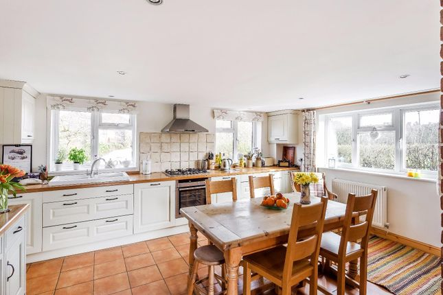 Thumbnail Semi-detached house to rent in Cranleigh Road, Ewhurst, Cranleigh