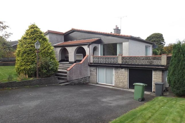 Thumbnail Detached house to rent in 12, Larch Hill Avenue, Holywood