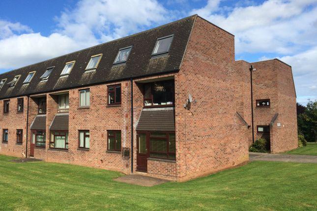 Thumbnail Maisonette to rent in Haywood Road, Taunton