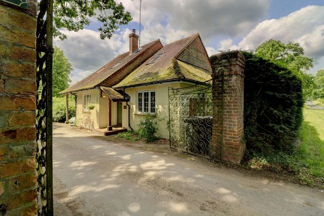 Thumbnail Lodge for sale in Somersbury Lane, Ewhurst, Cranleigh