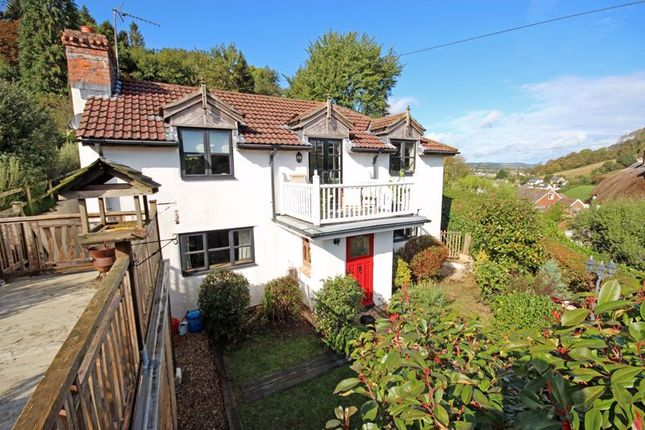 Thumbnail Detached house for sale in Stepps Lane, Axmouth, Seaton
