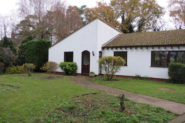 Thumbnail Detached bungalow to rent in Bury Road, Mildenhall, Bury St. Edmunds