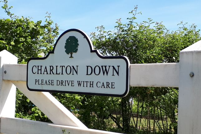 Thumbnail Maisonette to rent in Sherren Avenue, Charlton Down, Dorchester