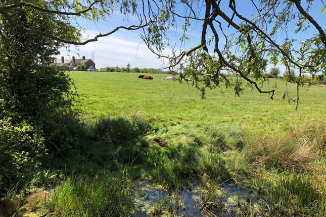 Thumbnail Land for sale in The Land Known As Harty Fields, Church Road, Oare, Faversham