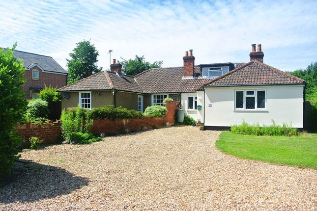 Thumbnail Bungalow to rent in The Street, Old Basing, Basingstoke