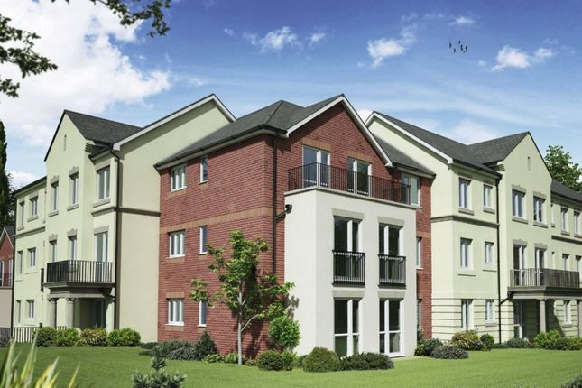 Thumbnail Flat for sale in Langford Road, Honiton