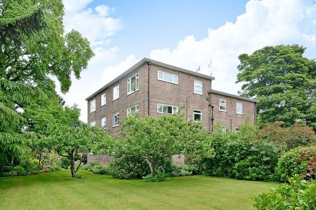 Thumbnail Flat for sale in Riverdale Road, Endcliffe, Sheffield