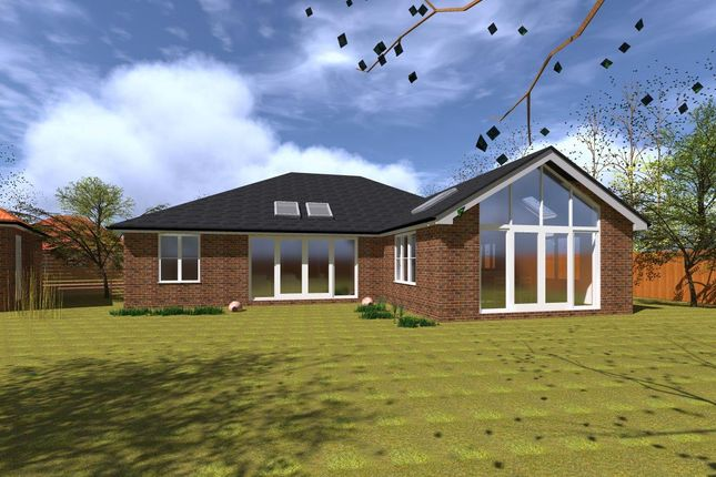 Thumbnail Property for sale in The Elms, Colchester Road, Thorpe-Le-Soken