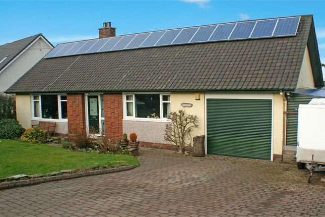 Thumbnail Detached bungalow for sale in Perth Road, Abernethy, Perth