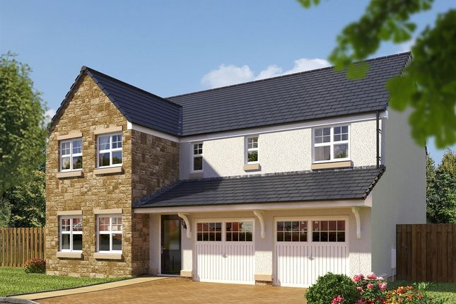 "Thumbnail Detached house for sale in ""The Fernilea"" at Gateside Road, Haddington"