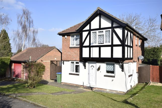 Thumbnail Detached house to rent in Amberley Close, Orpington, Kent