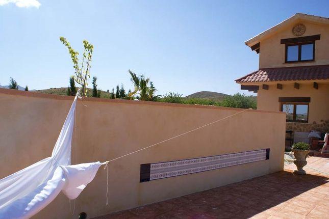Image13 of Pinoso, Alicante, Spain