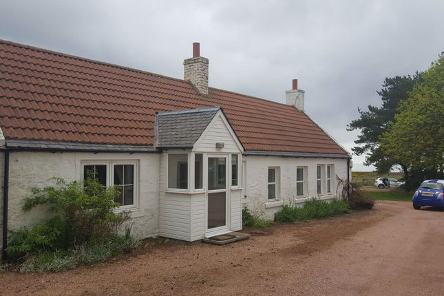 Thumbnail Bungalow to rent in Thistle Lane, South Street, St. Andrews