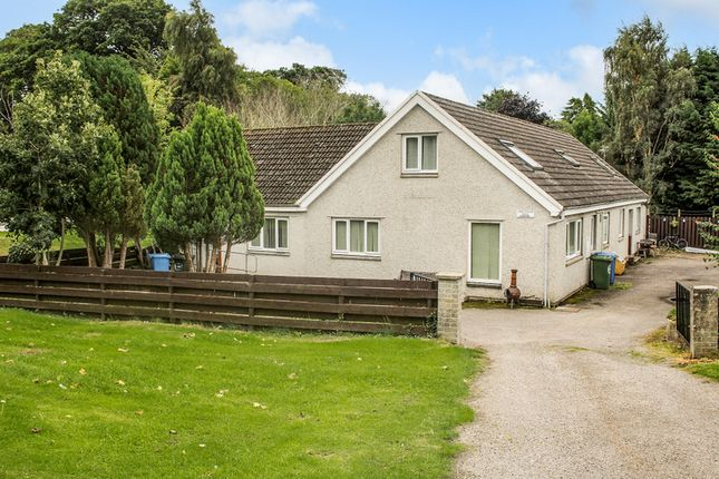 Thumbnail Hotel/guest house for sale in John Ogilvie House, Firhill, Alness