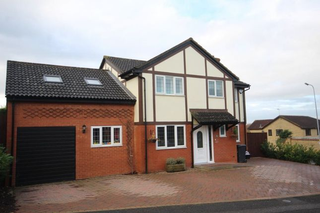 Thumbnail Property to rent in Wildern Lane, Northampton