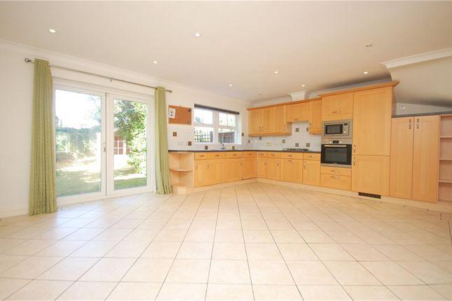 Thumbnail Semi-detached house to rent in Sandringham Mews, Hampton