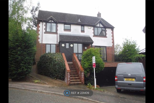 Thumbnail Detached house to rent in Ipswich, Ipswich