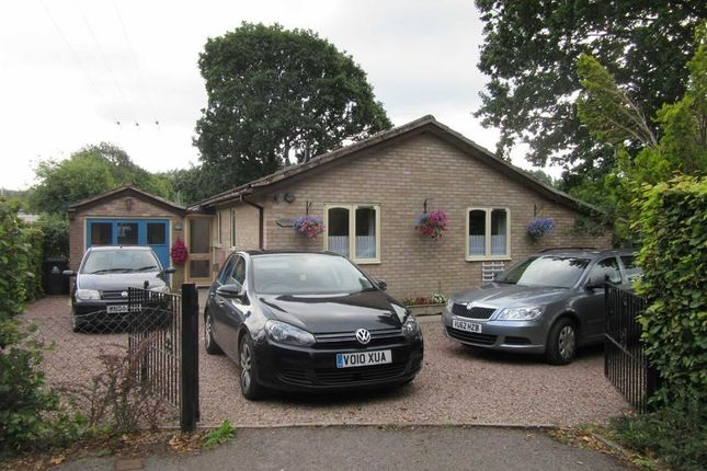 Thumbnail Detached bungalow to rent in High Street, Drybrook