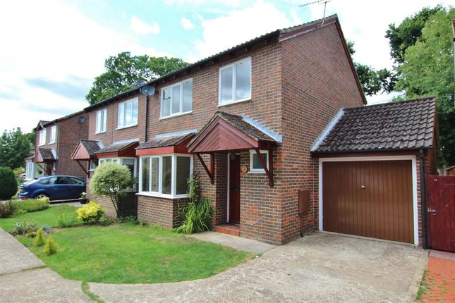 Thumbnail Semi-detached house to rent in Rosehill, Billingshurst