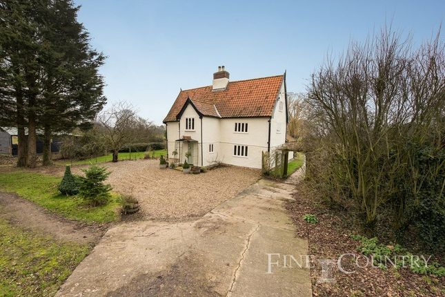 Thumbnail Detached house for sale in Wingfield, Diss