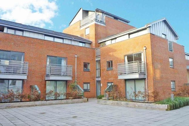 Thumbnail Flat to rent in Staple Gardens, Winchester