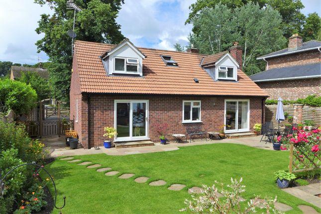 Thumbnail Detached house for sale in Borrage Lane, Ripon
