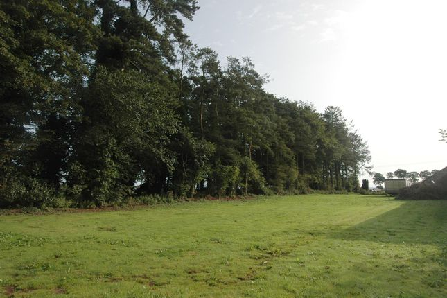 Thumbnail Land for sale in Building Plot, Garden Paddock, Duns