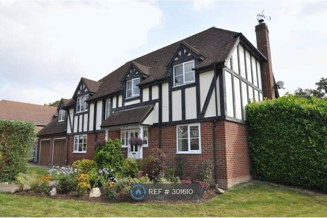 Thumbnail Detached house to rent in Woolton Lodge Gardens, Nr. Newbury