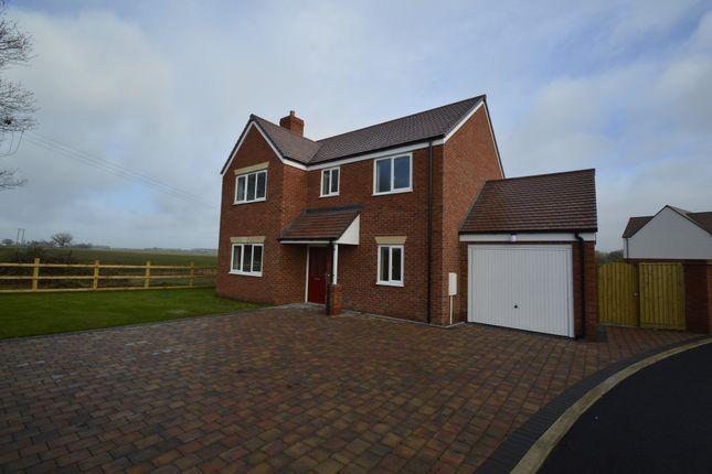 Thumbnail Detached house to rent in Barley Fields, Rodington, Shrewsbury