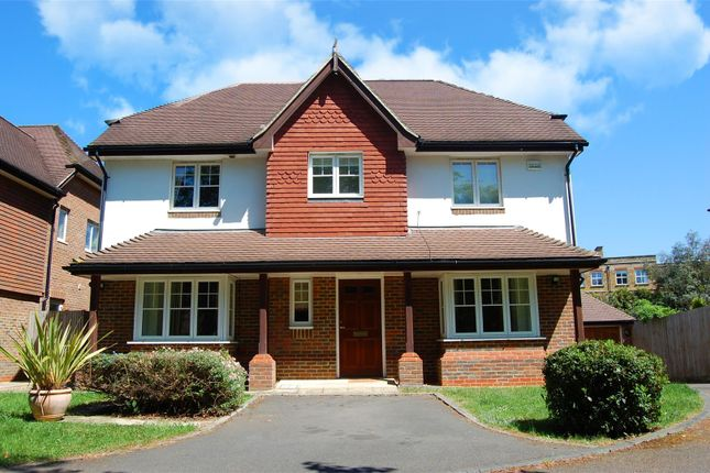 Thumbnail Detached house to rent in Hurst Road, East Molesey