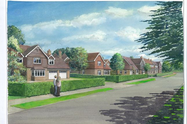 Thumbnail Detached house for sale in Berwick, Polegate