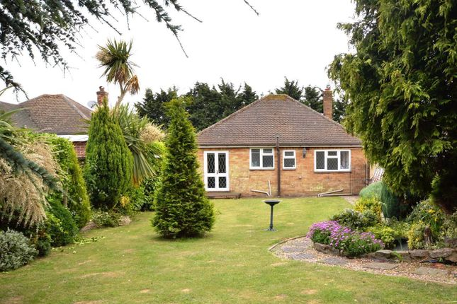 Thumbnail Bungalow to rent in Rush Green Road, Clacton-On-Sea