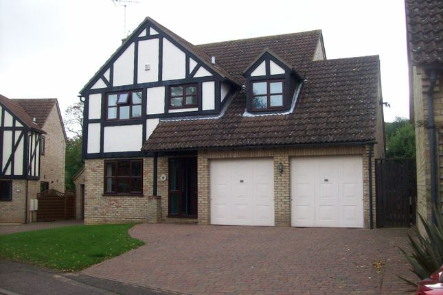 Thumbnail Detached house to rent in Martins Way, Orton Waterville, Peterborough