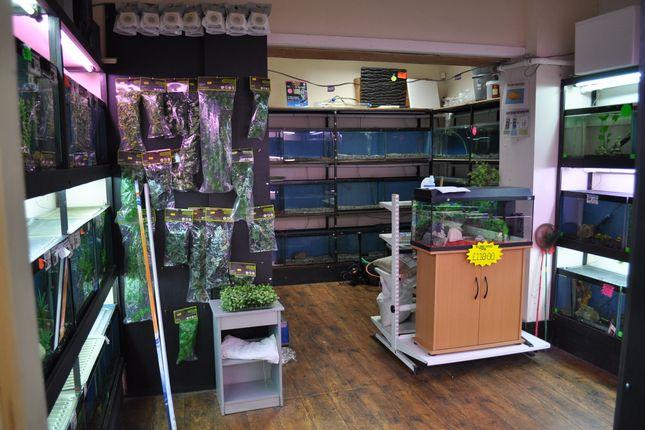 Thumbnail Retail premises for sale in New Wellington Street, Blackburn