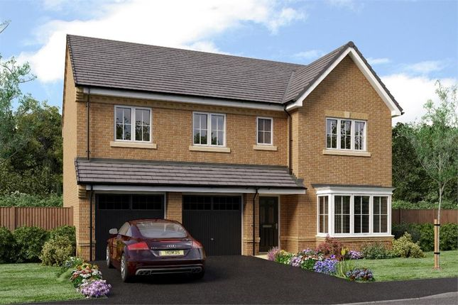 "Thumbnail Detached house for sale in ""The Buttermere"" at Netherton Colliery, Bedlington"