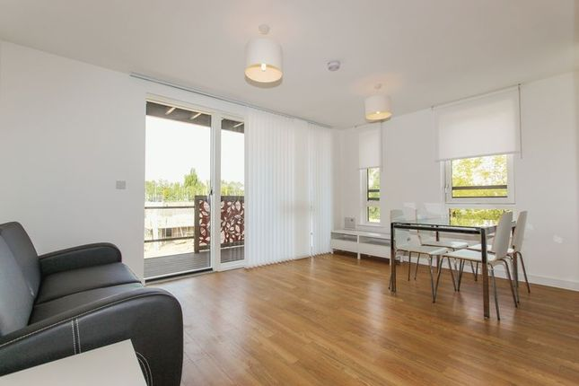 Thumbnail Flat to rent in Bluebell House, Redwood Park