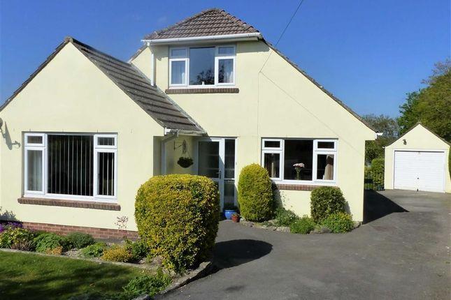 Thumbnail Property for sale in Casterbridge Road, Dorchester, Dorset