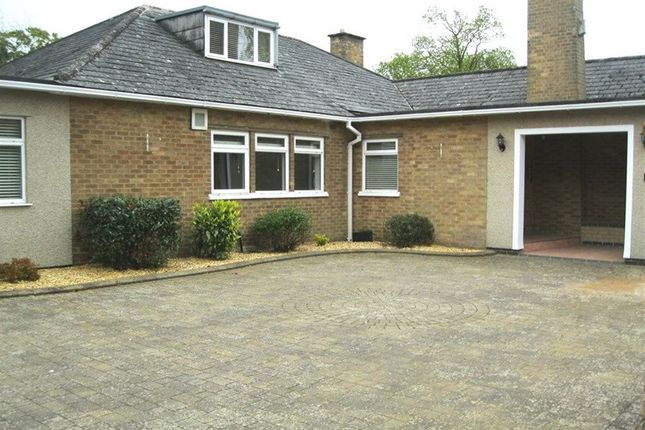 Thumbnail Bungalow to rent in Dunchurch Road, Rugby, Warwickshire