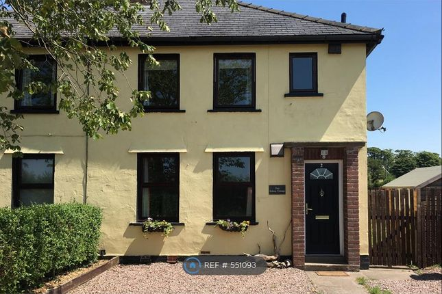 Thumbnail Semi-detached house to rent in Solway Cottage, Rockcliffe, Carlisle