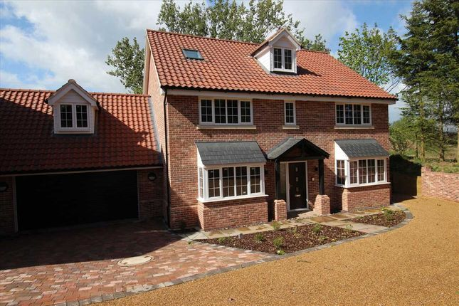 Thumbnail Detached house for sale in Chestnuts, Elton Park, Hadleigh Road, Ipswich