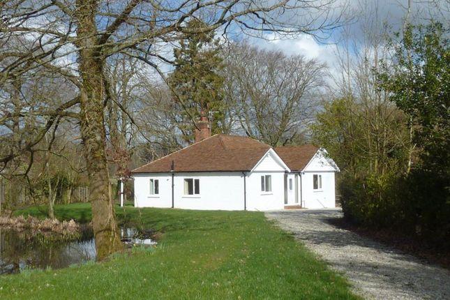 Thumbnail Bungalow to rent in Cranbrook Road, Benenden, Kent