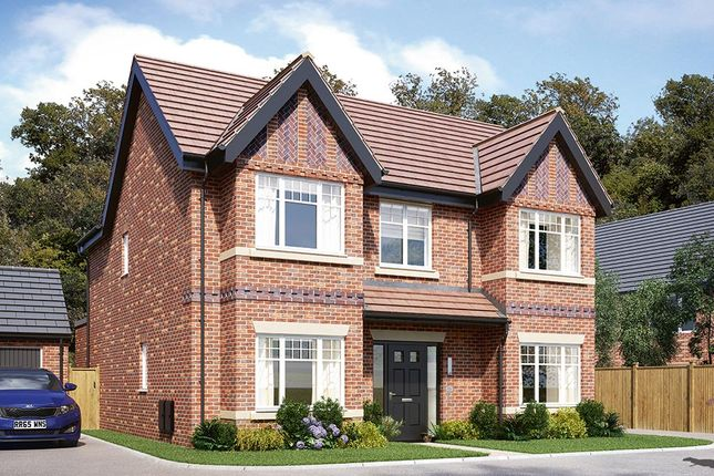 "Thumbnail Detached house for sale in ""The Tetbury"" at Badby Road West, Daventry"
